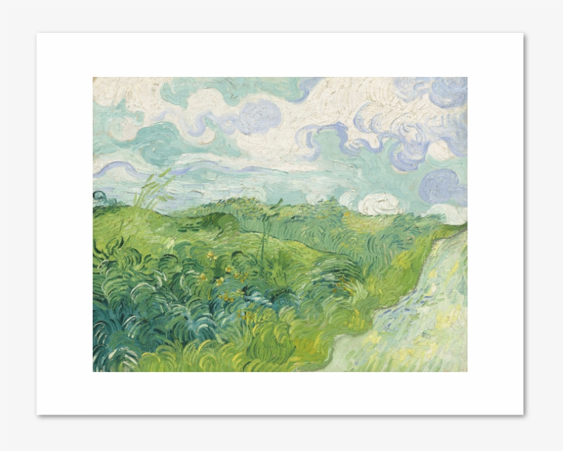 Green Wheat Fields, Auvers By Vincent Van Gogh Archival - Vincent Van Gogh Green Wheat Fields Auvers, transparent png #27623