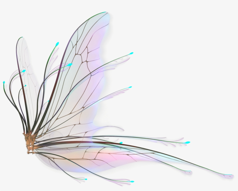 Fairy Wings Png - Realistic Fairy Wings Png, transparent png #28664