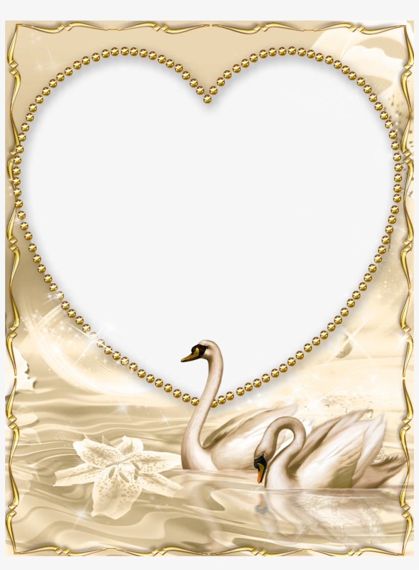 dba9b9e305a Beautiful golden frame with swan beautiful gold borders and frames  transparent png png 820x1116 Beautiful gold