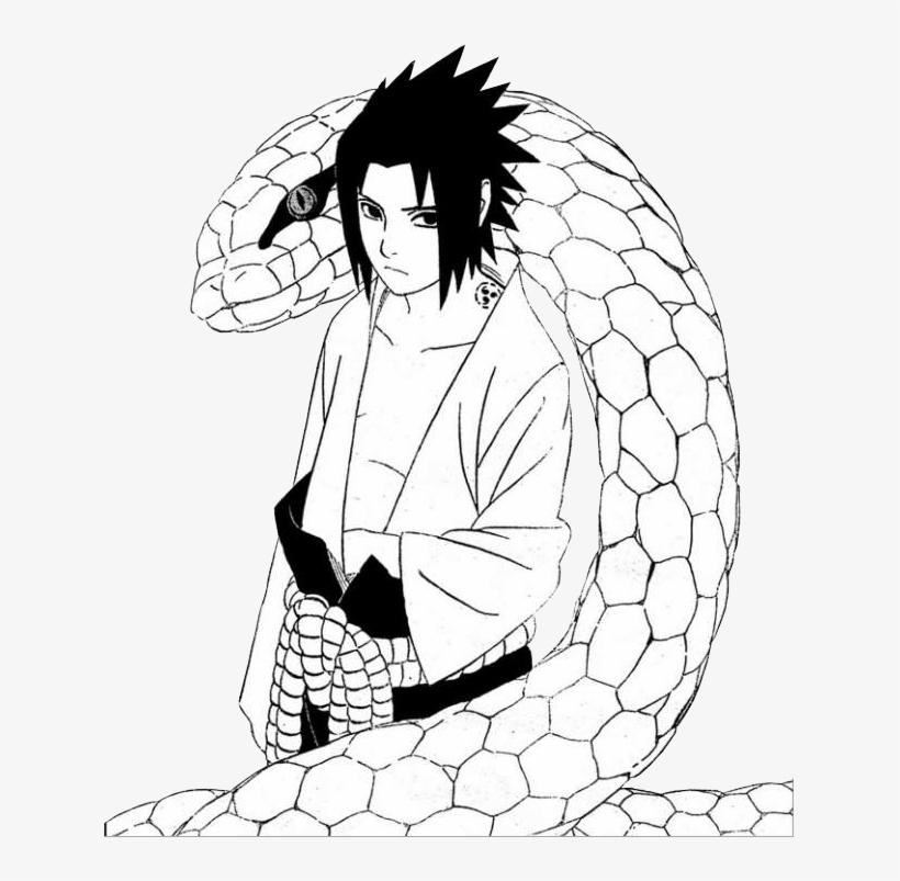 Sasuke Manga Png Clip Art Library Download Sasuke Coloring Page Free Transparent Png Download Pngkey