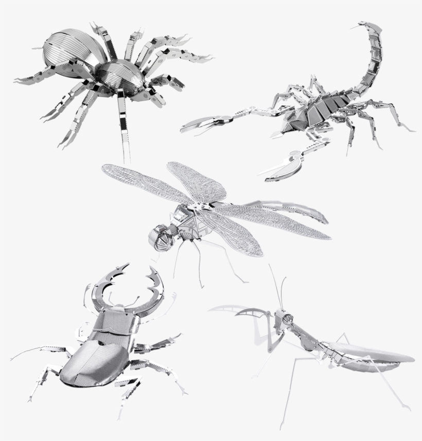 Picture Of Set Bugs - Fascinations Metal Earth 3d Laser Cut Model - Scorpion, transparent png #2058387