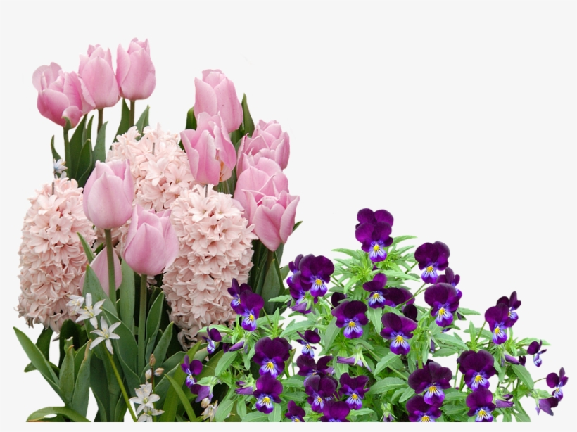 Easter Flower Png - Easter Flowers Png, transparent png #211166