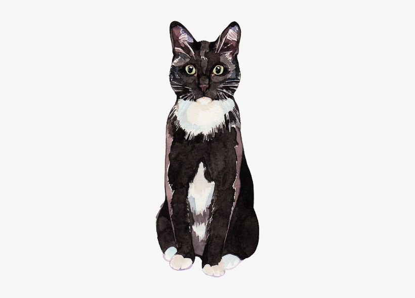 White, Cat And Wallpaper Image On We Heart It - Watercolor Black And White Cat, transparent png #212216