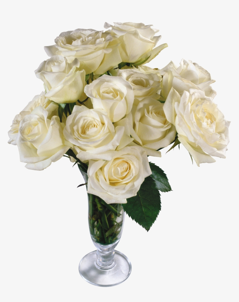 White Roses Png Free Download - Vase Flowers Transparent Background, transparent png #213451