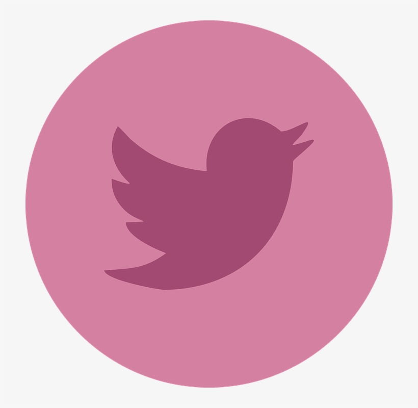 Twitter, Social Media, Social, Networking, Internet - Twitter Pink Logo Png, transparent png #215004