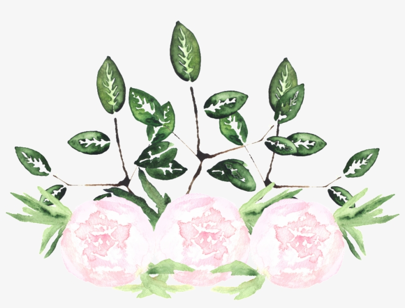 This Graphics Is White Noble Flower Transparent Decorative - Watercolor Painting, transparent png #219400