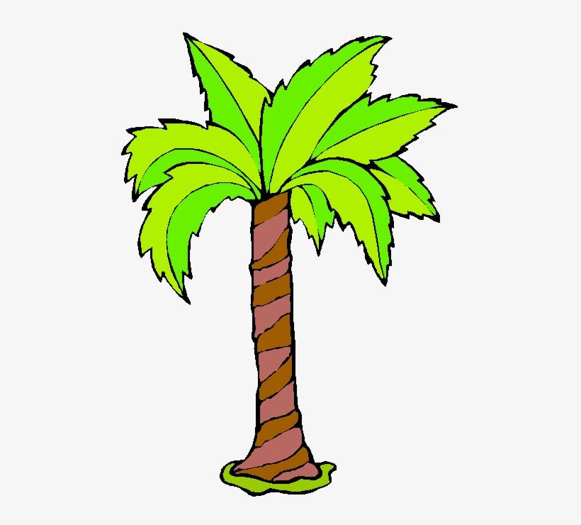 Palmeras Dibujo Animado Imagui Free Transparent Png Download Pngkey