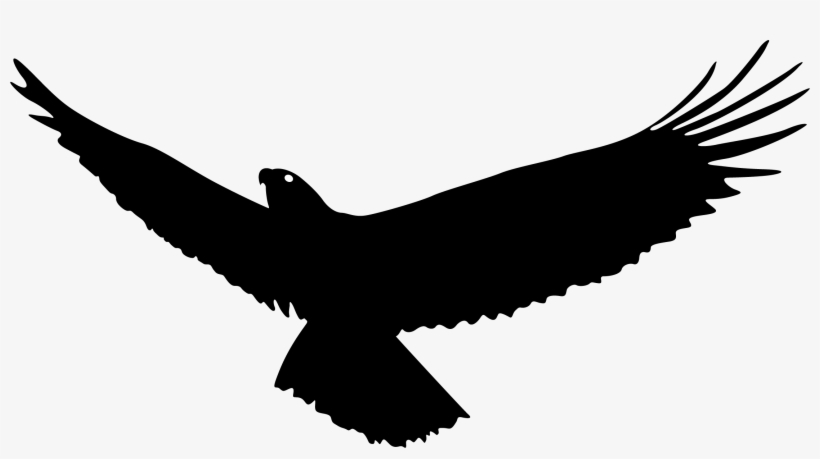 Vulture Vector Wing - Eagle Flying Silhouette Png, transparent png #2147932
