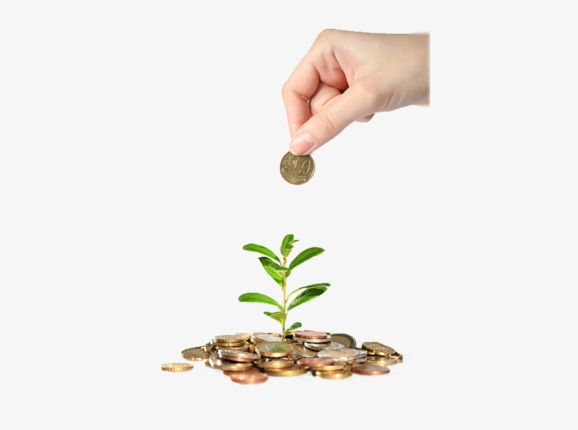 Planting-seeds - Low To Mid-middle Class Moving Up, transparent png #2164598