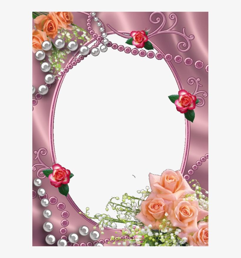 Pin By Kathleen Beaver On Kathleen,s Pinterest - Garden Roses, transparent png #2170489