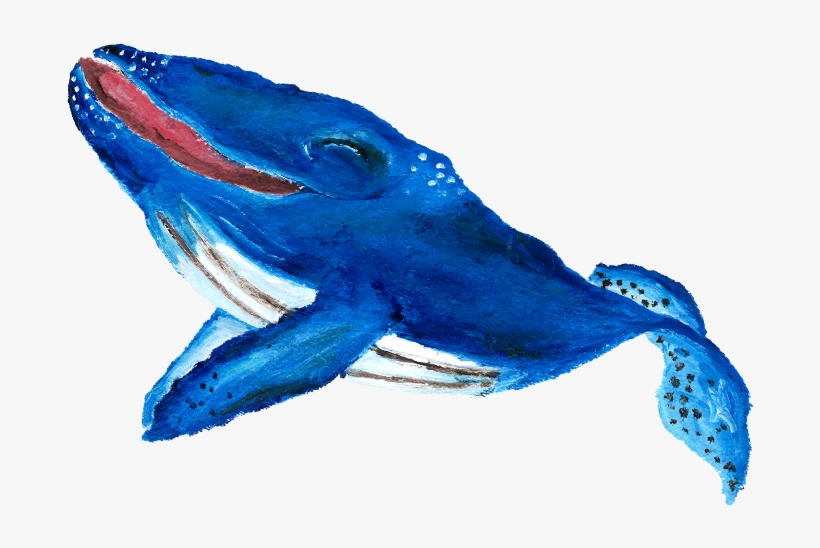 Why Was Will Special Well, He Loved To Sing & Will - Humpback Whale, transparent png #2188332