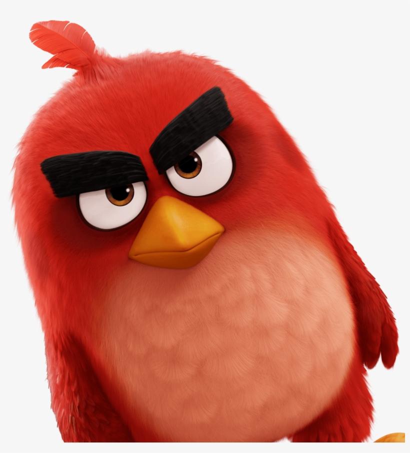 картинки птицы ангри говорят, что объект