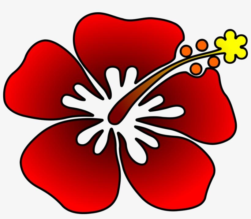 Com Plants Cut Flowers - Flower@pngkey.com