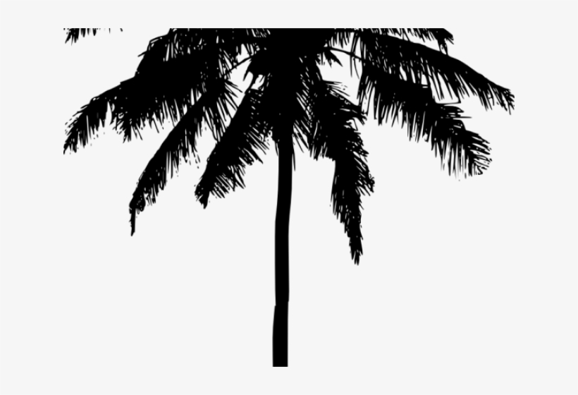 Palm Tree Silhouette Png, transparent png #221902