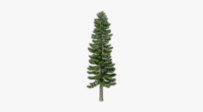 Fir-tree Png File - Pine Trees Transparent Png, transparent png #224509