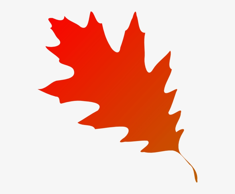 Apple, Pumpkin And Grape On Autumn Leaf Royalty - Red Fall Leaf Clipart, transparent png #229448