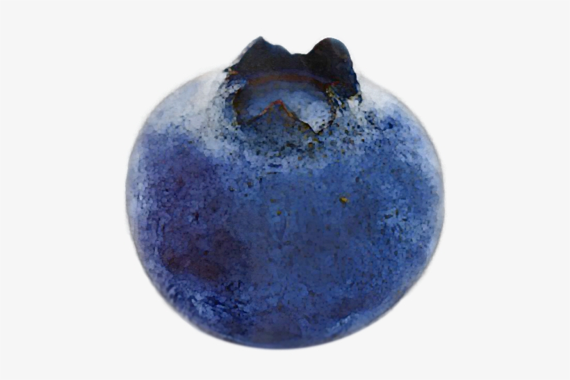 A Spartan Plant Breeder Perfects One Of Summer's Finest - One Blueberry, transparent png #236060