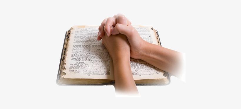 Una Vez Que Hayas Elegido Un Libro Lo Primero Que Debes - Meditacion De La Palabra De Dios, transparent png #2329666
