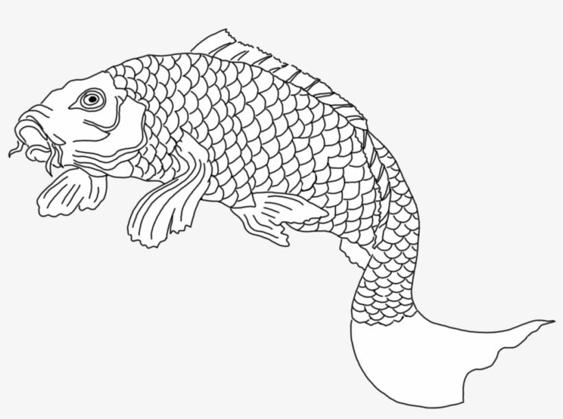 Koi Fish Sketch Black White - Drawing, transparent png #2350857