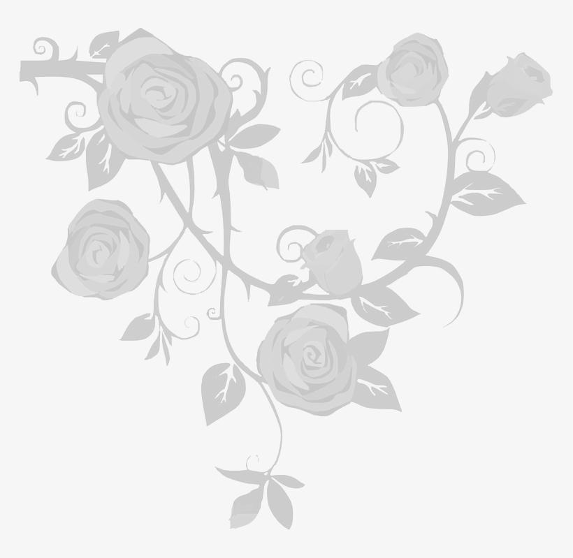 Design - Rose And Vine Drawings, transparent png #2371530