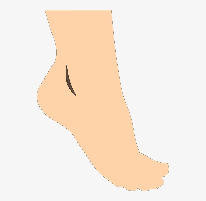 feet clipart vector foot clip art png free transparent png download pngkey feet clipart vector foot clip art png