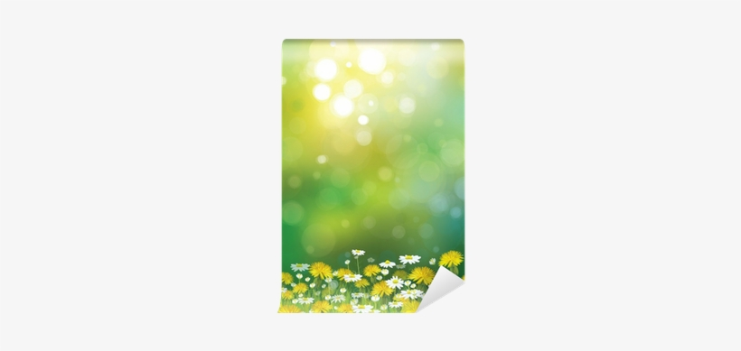 Vector Sunshine Background With Chamomiles And Dandelions - Komar Wall Mural Xxl, transparent png #242343