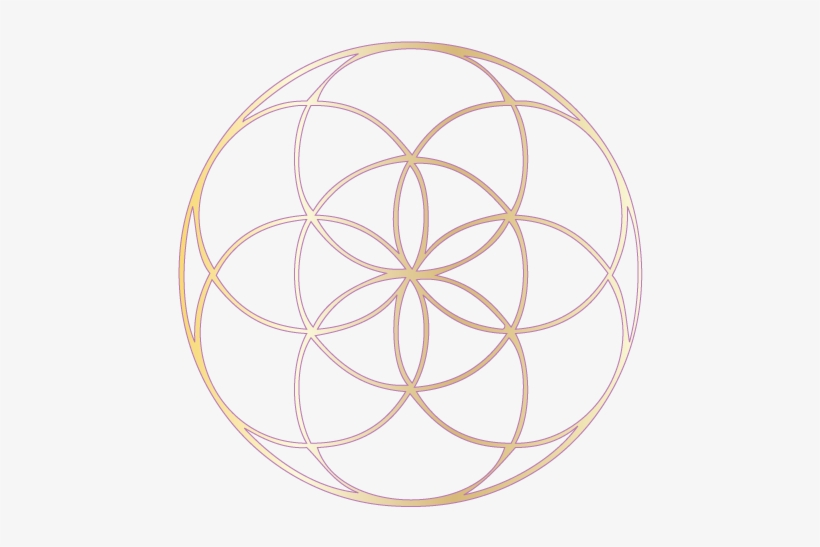 And So Often The Community Takes On A Life Of Its Own- - Gold Seed Of Life, transparent png #2407908