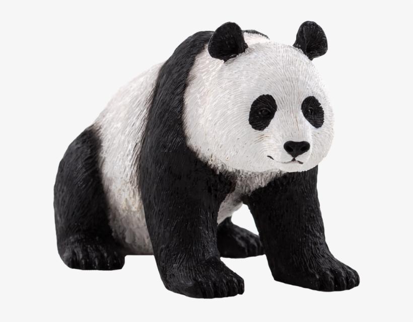 Oso Panda Png Stock - Animal Planet: Giant Panda, transparent png #2421953