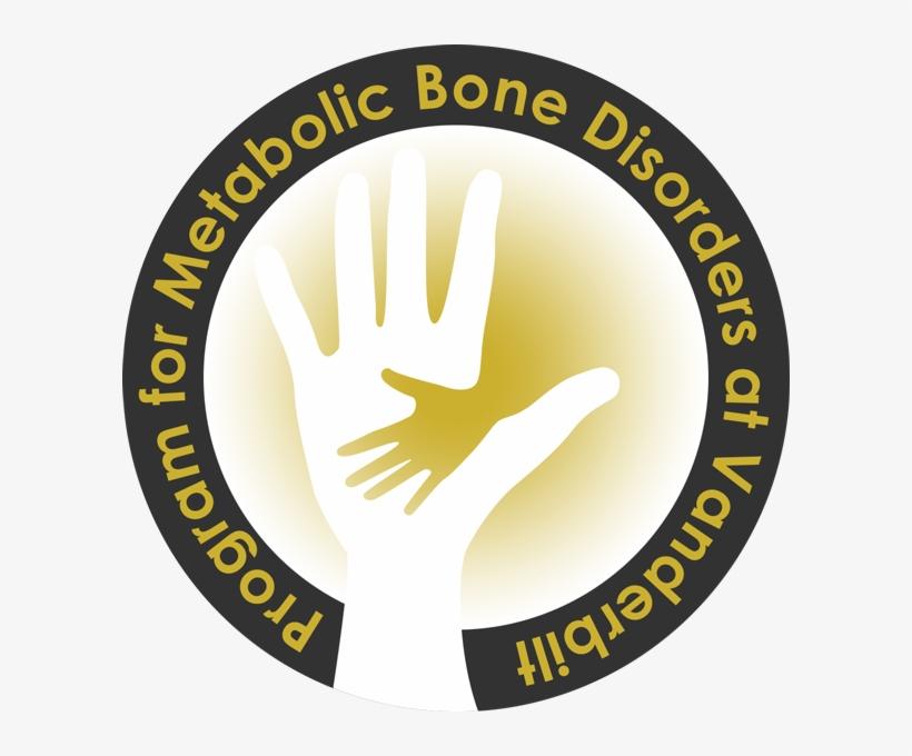 The Program For Metabolic Bone Disorders At Vanderbilt - New Standard Public School Raebareli Logo, transparent png #2430643