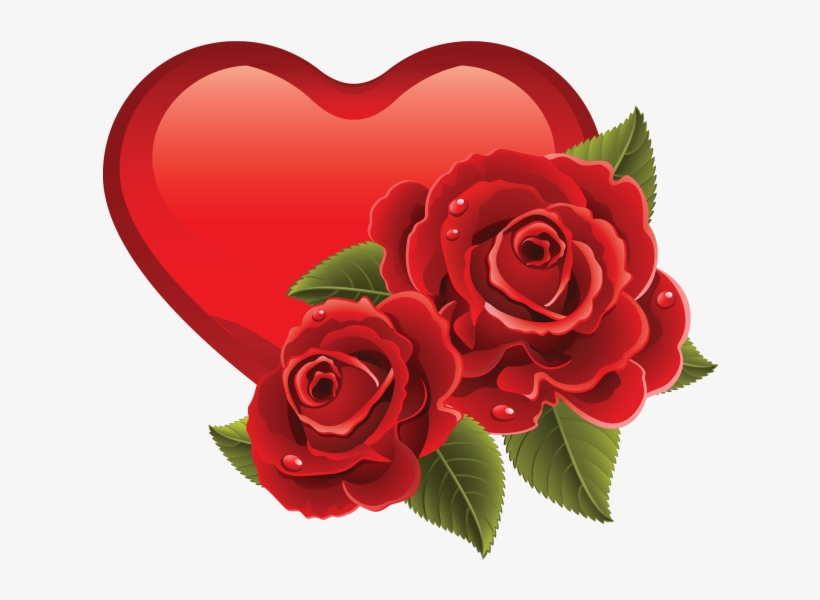 Sweet Memoriesred Roses Touch My Heartas Does Your - Red Rose Beautiful Flower, transparent png #2453686