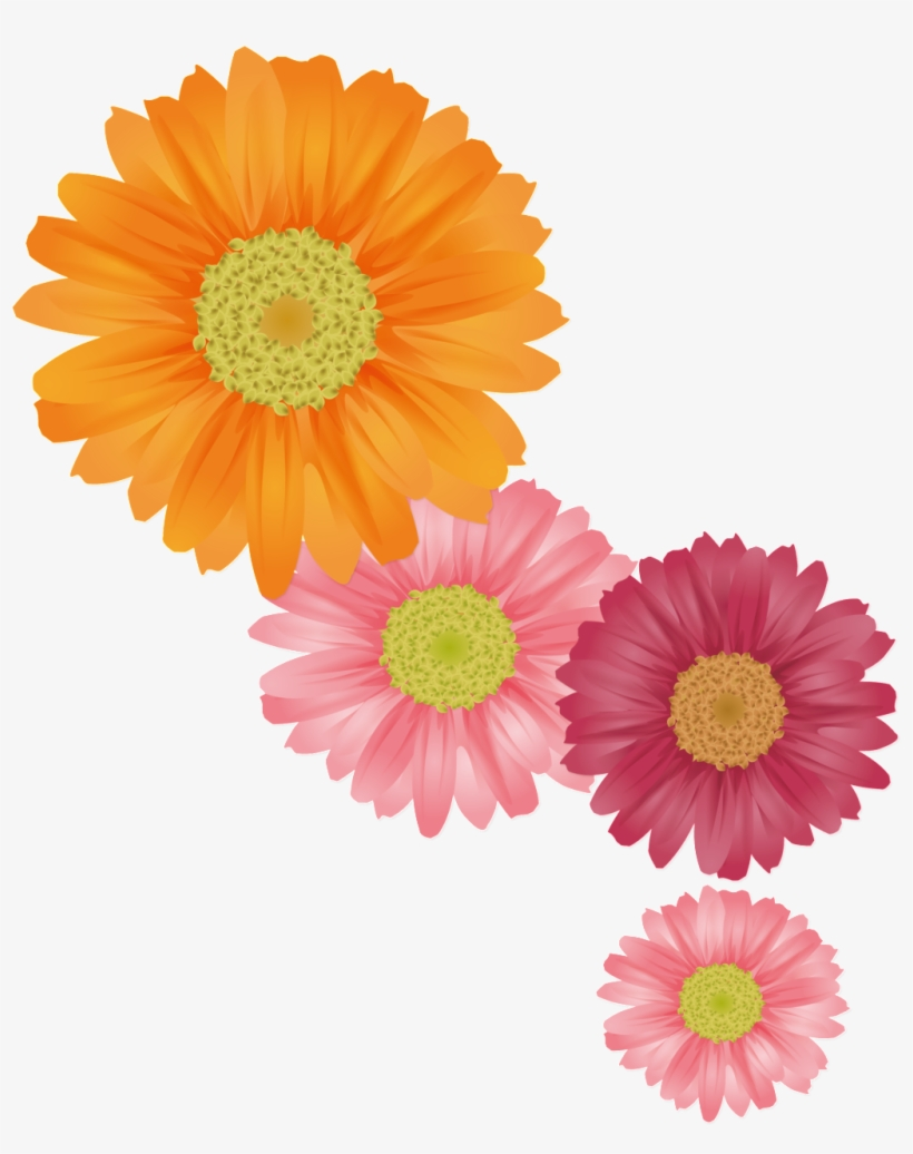 Fresh Orange Hand Painted Chrysanthemum Decorative - Daisy Flower Vector Psd, transparent png #2457118