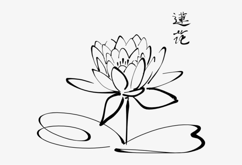 Korean Wedding Cliparts Diagram Of Lotus Flower Free Transparent