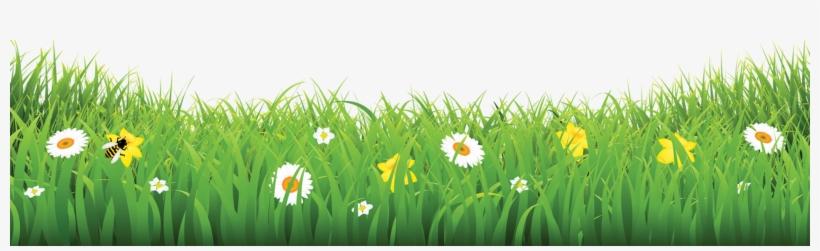 Grass-flower - Flower & Grass Pic Png, transparent png #2476149