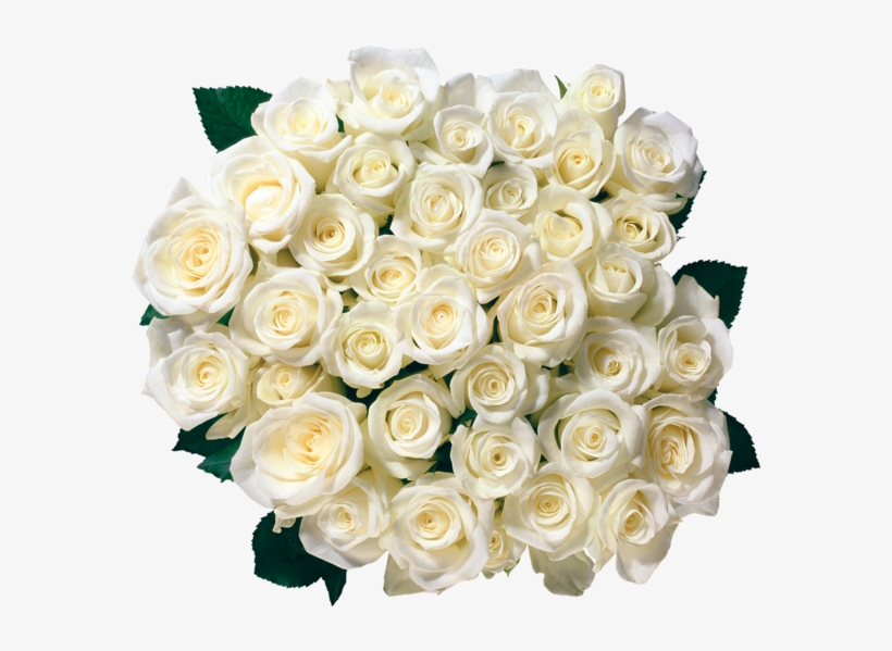 Flowers Clipart Birthday Roses, Order Flowers, Send - White Roses Border Png, transparent png #2484571