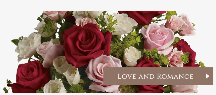 Roses Flowers Online - Love Letters - Flowers Delivered, transparent png #2484597