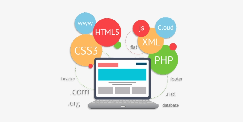 Ibase Solutions Has An Expert Web Development Team - Web Development Roadmap For Beginners, transparent png #2491902