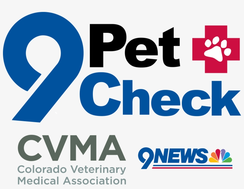 Each Year Wrah Participates In The 9pet Check With - Nine News, transparent png #2513742
