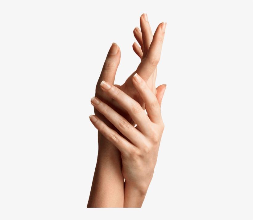 Hand Rejuvenation Adelaide - Hand Modelling, transparent png #2537033