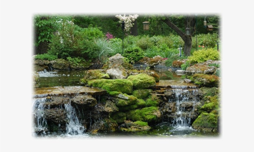 Waterfalls And Ponds Gardens Of Rice Creek Free Transparent