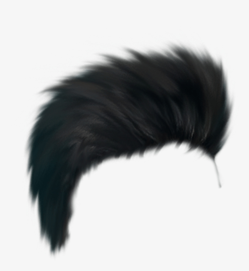 Cb Hair Png - Sr Editing Zone Png Hair, transparent png #2573897