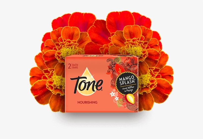 Tone Mango Splash Cocoa Butter Soap, 4.25 Oz, 2 Count, transparent png #2596944