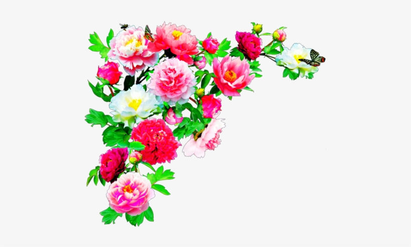 Editing Overlay And Transpa Image - Flowers Hd In Png - Free