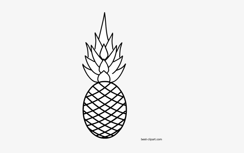 Black And White Pineapple Image Free Fruits Black White Free Transparent Png Download Pngkey