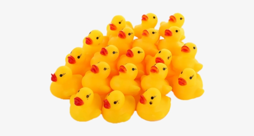 Duck Army - Lots Of Rubber Ducks, transparent png #265016