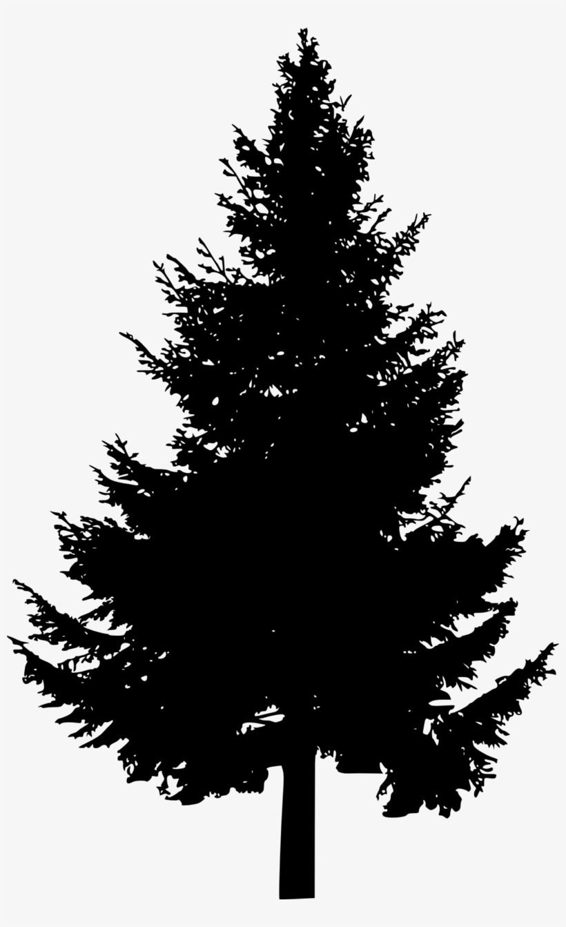 Pine Tree Silhouette Free Images Toppng Picture Royalty - Pine Trees Silhouette Png, transparent png #268817