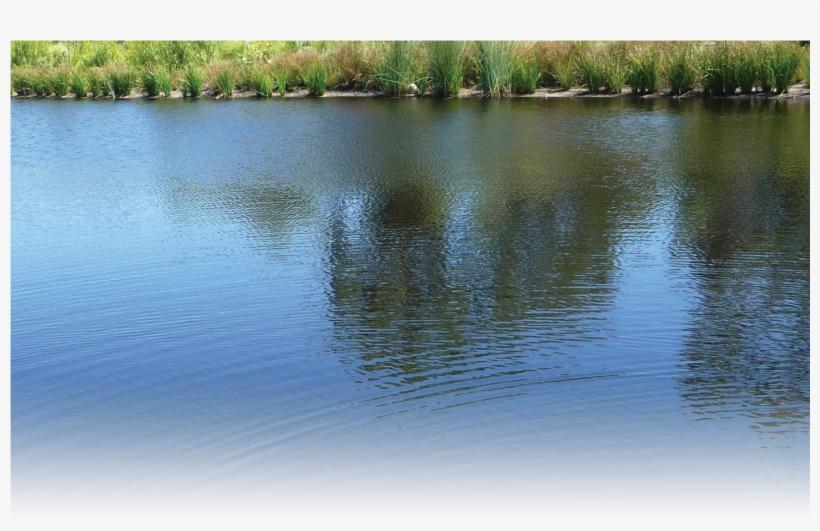 River Water Png - River Water River Png Hd, transparent png #269068
