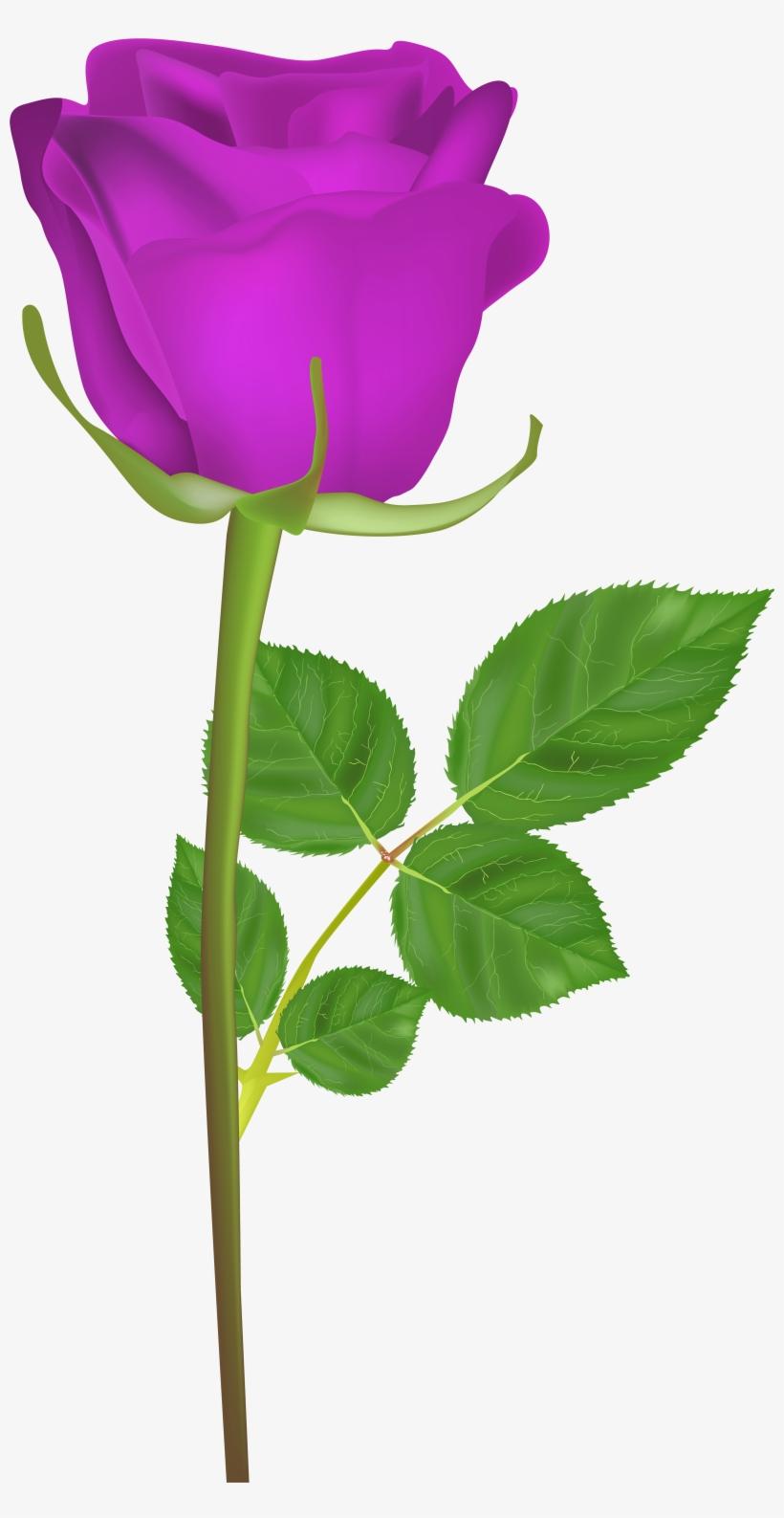 Rose With Stem Purple Png Clip Art Imageu200b Gallery Good Morning