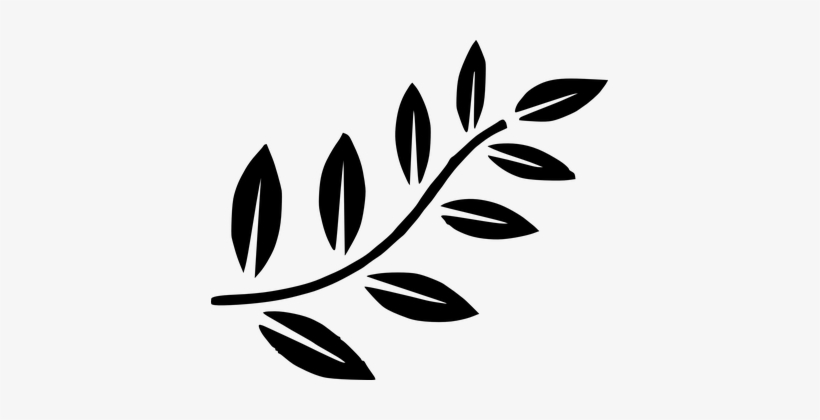 Fern Leaves Green Palm Tree Branches Branc - Black Leaves Clip Art, transparent png #2625250
