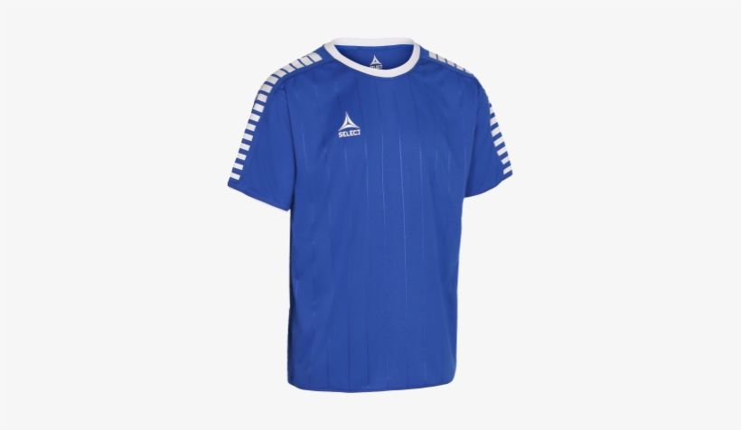 a0d2ec29 Player Shirt S/s Argentina - Select Argentina T Shirt - Free ...