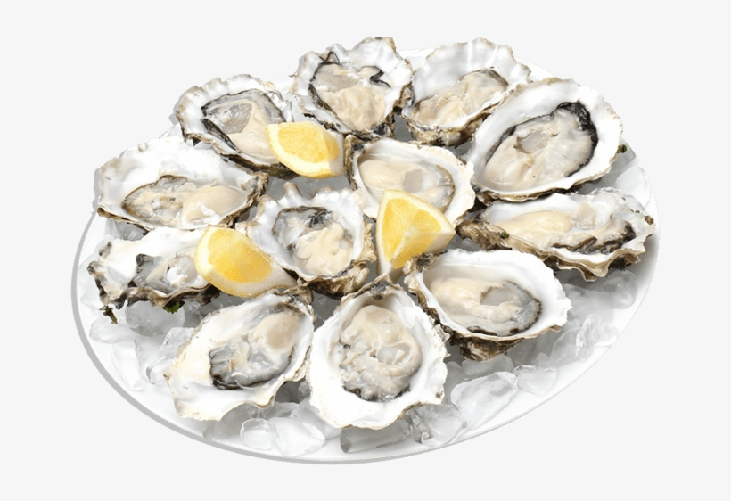 Food - Seafood - Plate Of Oysters Png, transparent png #2645548